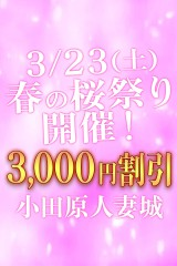 春の桜祭り3000円割