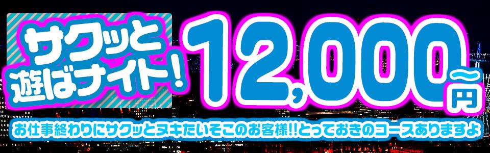 サクッと遊ばナイト!12,000円~