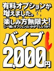 バイブ2,000円